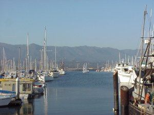 Santa Barbara Harbor from Stearn's Wharf