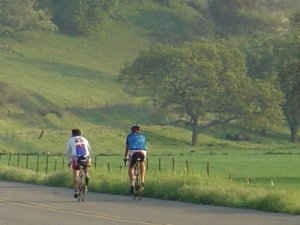 Bike to the Wineries in Santa Ynez Valley
