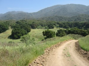 Placerita Canyon Natural Area