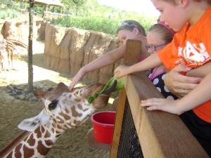 Kid-Friendly Fun at the Dallas Zoo