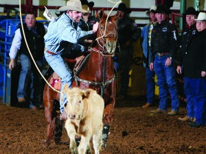 Stock Yard Championship Rodeo<br>Photo: Fort Worth Convention & Visitors Bureau
