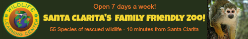 Wildlife Learning Center-just 10 minutes from SCV!