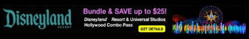 Disneyland and Universal Studios Combo Pass