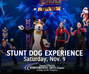Stunt Dogs at COC PAC