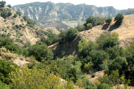 Rice Canyon Trail in the Summer, Santa Clarita